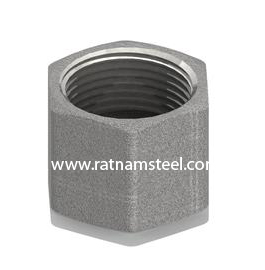 ASTM B564 Monel 400 Hosetail Nut Only Fastening Thread manufacturer in India