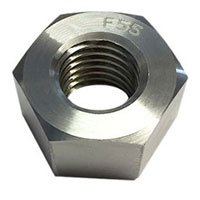 Incoloy Finished Hex Jam Nut