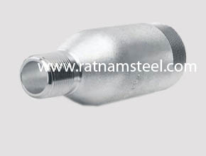 200/201 Stainless Steel Plain Threaded Swage Nipples manufacturer in India