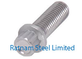 Stainless Steel AL-6XN 12 Point Flange Bolt manufacturer in India