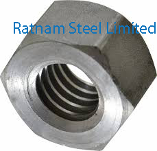 Stainless Steel AL-6XN Acme Nuts manufacturer in India