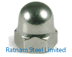 Stainless Steel AL-6XN Acorn Nuts manufacturer in India