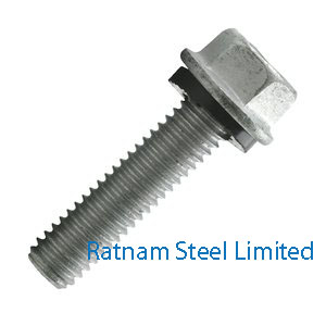 Stainless Steel AL-6XN Bin Bolts manufacturer in India