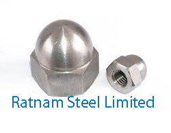 Stainless Steel AL-6XN Cap Nutsmanufacturer in India
