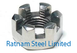 Stainless Steel AL-6XN Castle Nuts manufacturer in India