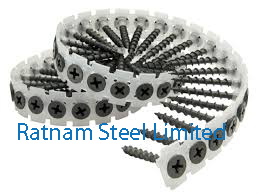 Stainless Steel AL-6XN Collated Screw manufacturer in India