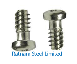 Stainless Steel AL-6XN Euro Screw manufacturer in India