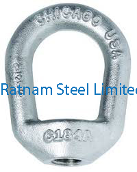 Stainless Steel AL-6XN Forged Eye Nut manufacturer in India
