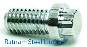 Stainless Steel AL-6XN Ferry Cap Screws manufacturer in India