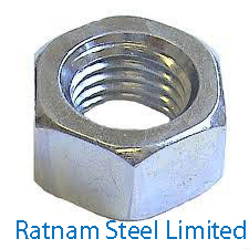 Stainless Steel AL-6XN High Nuts manufacturer in India