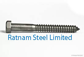 Stainless Steel AL-6XN Lag Bolt manufacturer in India