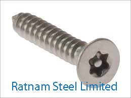 Stainless Steel AL-6XN Security head screw manufacturer in India