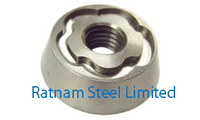 Stainless Steel AL-6XN Security Nuts manufacturer in India