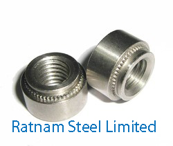 Stainless Steel AL-6XN Self Clinching Nut manufacturer in India
