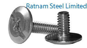 Stainless Steel AL-6XN Sidewalk Bolts manufacturer in India