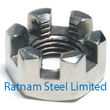 Stainless Steel AL-6XN Slotted Nuts manufacturer in India
