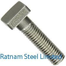 Stainless Steel AL-6XN Square Head Bolts manufacturer in India