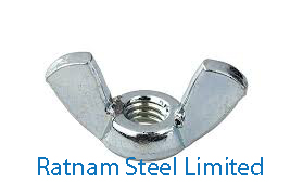 Stainless Steel AL-6XN Wing Nuts manufacturer in India